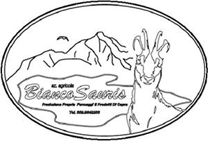 logo-Bianco-Sauris